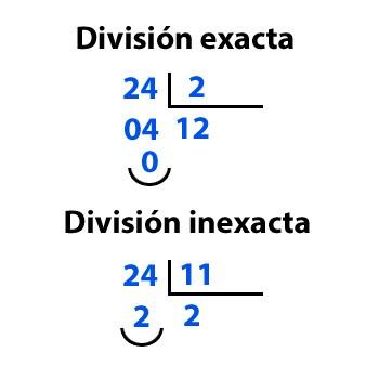 Tipos de división